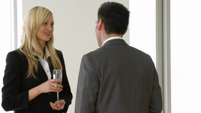 Businesswoman and businessman talking in a business celebration. Footage of a beautiful businesswoman holding a glass of champagne talking to a businessman in stock footage