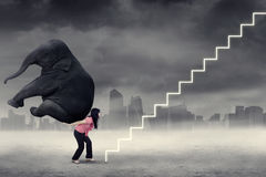 Businesswoman climbing stairs with elephant. Strong female entrepreneur climbing a stairway while carrying a big elephant. Concept of heavy job and difficult Royalty Free Stock Photos
