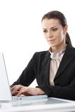 Businesswoman concentrating on work Royalty Free Stock Photos
