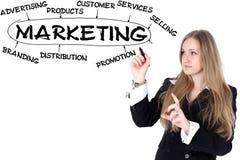 Businesswoman drawing plan of Marketing Royalty Free Stock Image