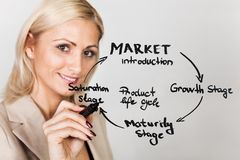 Businesswoman drawing product lifecycle diagram Stock Photos