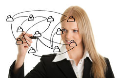 Businesswoman drawing a social network graph Stock Photos