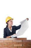 Businesswoman with drawings Royalty Free Stock Photography