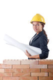 Businesswoman with drawings Stock Image