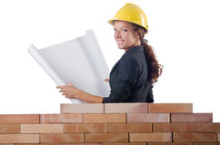 Businesswoman with drawings Royalty Free Stock Photos