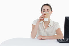 Businesswoman drinking a takeaway tea while using a computer Stock Photography