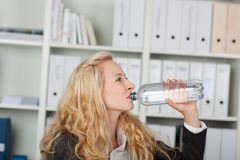 Businesswoman Drinking Water From Bottle Stock Images