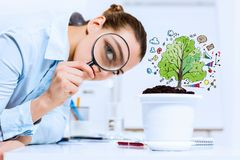 Businesswoman examining sprout Royalty Free Stock Image
