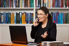 Businesswoman financial adviser telephone call. Middle aged woman in an office with her laptop, calculator and file binder talking business on the telephone Stock Photography