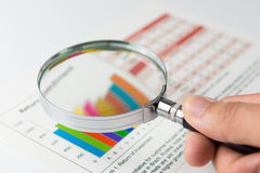 businesswoman financial reports working 库存照片