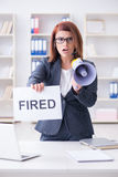 The businesswoman firing people in office Stock Image