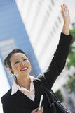 Businesswoman Hailing Cab Stock Photos