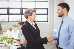 Businesswoman handshaking with male colleague Royalty Free Stock Image
