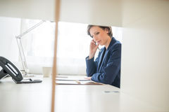 Businesswoman hard at work in the office Stock Photo