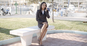 Businesswoman Having A Conversation Stock Photos