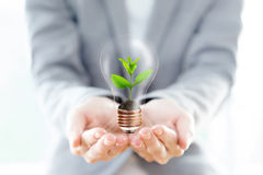 Businesswoman hold Light Bulb with soil and green plant sprout Stock Photography