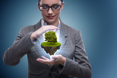 The businesswoman holding floating island with tree Royalty Free Stock Photography