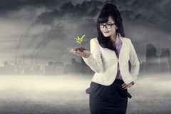 Businesswoman holds plant outdoors Stock Image