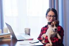 Businesswoman at home interior with dog Stock Photo