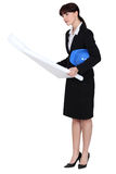 Businesswoman looking at blueprint Stock Photo
