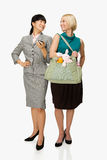 Businesswoman and mother royalty free stock photo