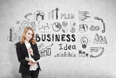 Businesswoman with a notebook standing near a concrete wall with business idea icons Royalty Free Stock Photography