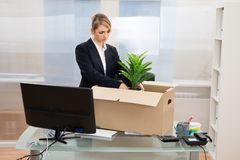 Businesswoman packing belongings in box Stock Photos