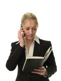 Businesswoman with personal organize Stock Photography