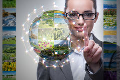 The businesswoman pressing virtual button on nature collage Royalty Free Stock Image
