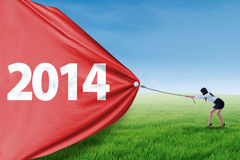 Businesswoman pulls banner of 2014 on the field Royalty Free Stock Image