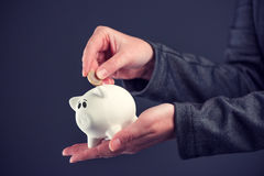 Businesswoman putting one euro coin in piggy bank. Money savings and home budget concept Royalty Free Stock Image