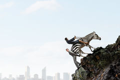 Businesswoman ride zebra . Mixed media Stock Photo