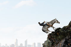 Businesswoman ride zebra royalty free stock photo