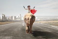 Businesswoman riding elephant . Mixed media Royalty Free Stock Photo