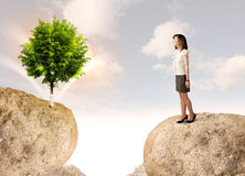 Businesswoman on rock mountain with a tree Royalty Free Stock Photography