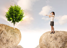 Businesswoman on rock mountain with a tree Stock Photo