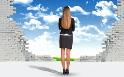 Businesswoman and ruined brick wall with nature Royalty Free Stock Photos