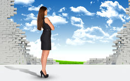 Businesswoman and ruined brick wall with nature Stock Photography