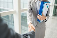 Greeting coworker. Businesswoman shaking hand of coworker before meeting royalty free stock image