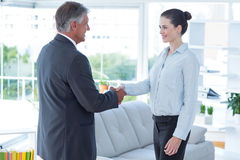 Businesswoman shaking hands with a businessman Royalty Free Stock Images