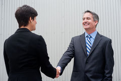 Businesswoman shaking hands with businessman Stock Images