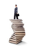 Businesswoman standing on a stack of books Stock Image