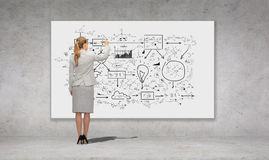 Businesswoman or teacher with marker from back Royalty Free Stock Photography