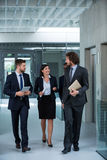 Businesswoman walking with colleagues stock photo