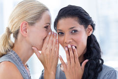 Businesswoman whispering gossip to her colleague. In the office Stock Photos