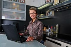 Businesswoman working at home Royalty Free Stock Image
