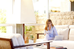 Businesswoman working at home Royalty Free Stock Photos
