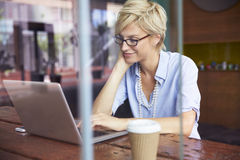 Businesswoman Working On Laptop In Coffee Shop Stock Images