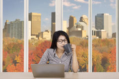 Businesswoman working with a laptop and tea Stock Photo