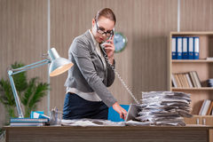 The businesswoman working in the office Stock Photos